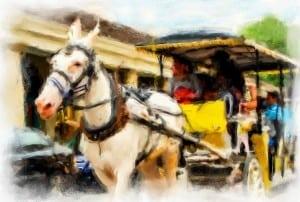 VLS_0778_a_horse2-Edit-2